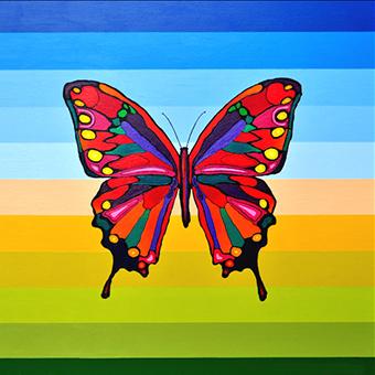 Butterfly 91cm x 91cm